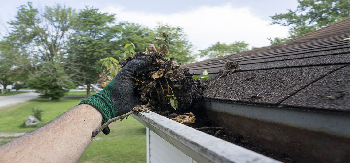 gutter cleaning services Baraboo, WI